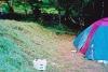 Camp. St-Amand-de-Coly - Copie.jpg