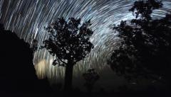 filés des étoiles circumpolaires-.jpg